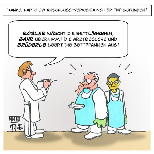 Anschlussverwendung FDP