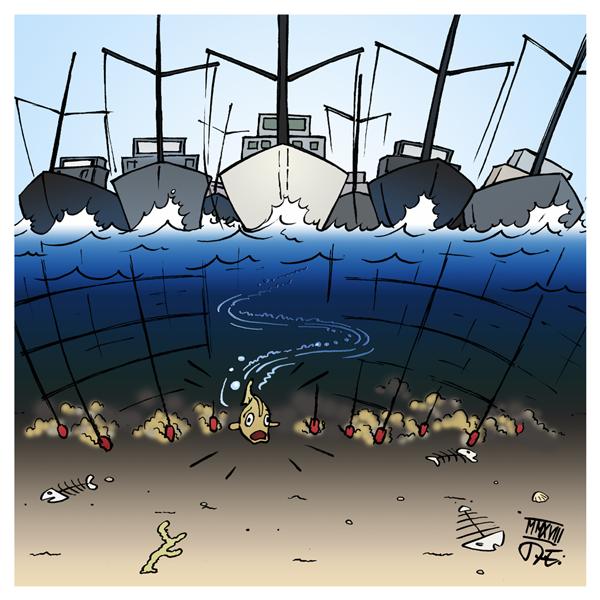 Fischerei Fischindustrie Fische Artensterben Überfischung Fisch Bestände Weltmeere Umwelt Umweltschutz Nahrungsmittel Lebensmittelindustrie Raubbau Ökologie Naturschutz