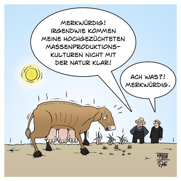 Hitzewelle Deutschland Landwirtschaft Bauern Schäden 170 Millionen 340 Mio Euro Bund Länder Soforthilfe Agrarproduktion Folgen Umwelt Natur Naturschutz Klimawandel