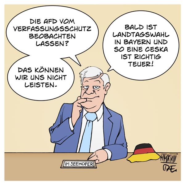 Innenminister Horst Seehofer AfD Verfassungsschutz Beobachtung NSU Terror rechter Terror Terrorfinanzierung Deutschland