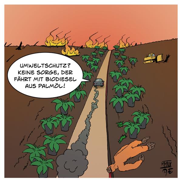 Biodiesel Palmöl Plantagen Monokulturen Landgrabbing Brandrodung Urwald Naturwald Umweltschutz Dieselskandal Abgase Emissionen Verbrennungsmotor Klimawandel Klimaschutz