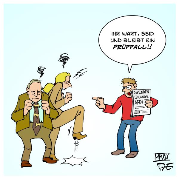 AfD Prüffall Verfassungsschutz Beobachtung rechter Flügel rechte Gewalt rechter Terror Nazis Alternative für Deutschland Alexander Gauland Alice Weidel Spenden Spendenskandal Parteispenden