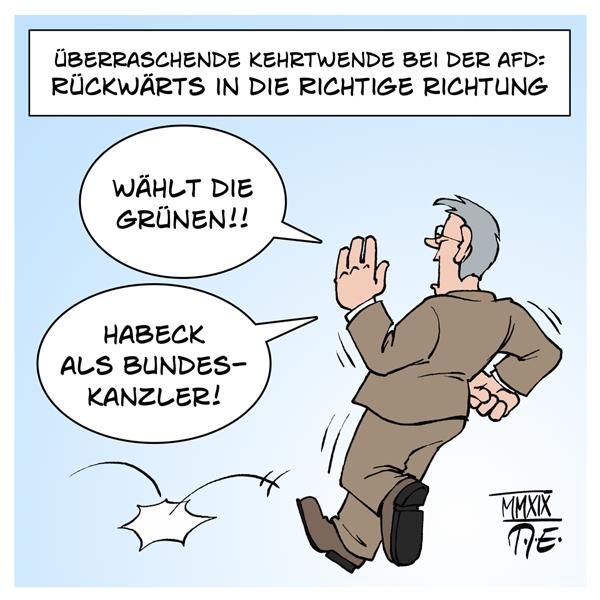 Meuthen AfD Robert Habeck die Grünen DieGrünen Wahlkampf EU-Wahl Bundeskanzler auswandern