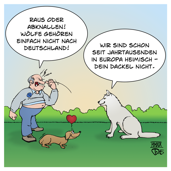 Wolf Deutschland Europa Wildtiere heimische Arten Artenvielfalt Biodiversität Einwanderung Rückwanderung