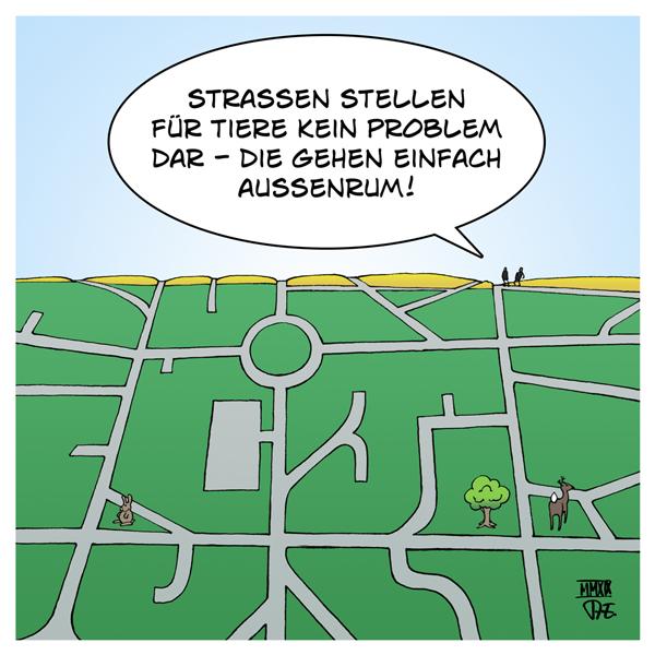 Grünstreifen Graustreifen Tiere Natur Straßen Bebauung Umwelt Wald Wiesen Felder Knicks Rückzugsraum Lebensraum Verdichtung Biodiversität Artenvielfalt Urbanisierung Infrastruktur Deutschland Europa